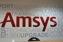 Vinyl Cut Lettering / Images of Vinyl Cut Lettering installations / by Surrey Banners and Signs