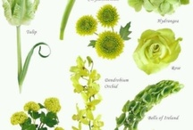 Form Linear Flower arrangements