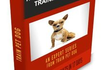 DOGGIE Poopy and pee house training