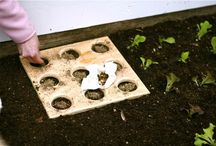 Small spaces -The Permaculture Microholding -