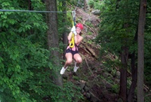 Zip lines in PA / 18 total zip lines on our property!!  Mountain Adventures includes 8 activities (and zips), the Vertical Trek is a guided canopy zip line tour, and facilitated team building at the ropes course also includes zip lines.