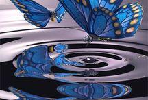 <♡>Butterflies<☆>