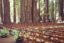 ceremony setting >//< / wedding ceremony location setting vibe feel style