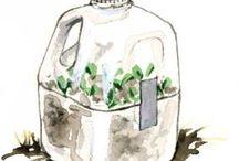 Garden Ideas Galore