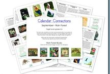 rainforest animals / by Apple Uypitching