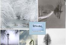 WinterWonderland / Winter scenes