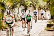 Cycling, MTB, bike