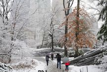 NYC Christmas