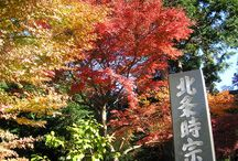 Exotic Japan / Pictures from #Japan , Land of the Rising Sun