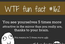 Cool facts
