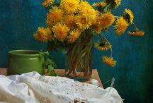цветы, листья
