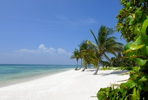 PUNTACANA Resort & Club, Punta Cana, Dominican Republic / Location Photo Shoot for Puntacana Resort & Club, Dominican Republic, #puntacanaresort, #envisionworksinc