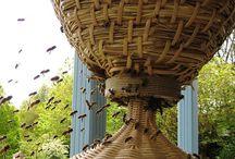 Bees / Honey Bees, and bee keeping