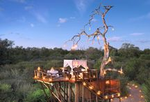 Stay a While: Lodges & Camps We Love / Enjoy the many beautiful and luxurious lodges, hotels and camps Africa has to offer!