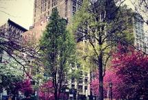 NYC, City of my dreams