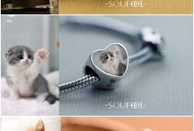 Pinterest is for KITTIES!! / Cats and that's it