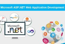 ASP.NET Web Development / We are and expert Asp.Net Web development company providing custom MVC web development, C# or VB.Net Web API, WPF and WCF services, JSON and REST api services.