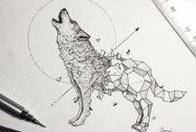 Animais e geometria