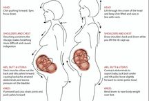 Pregnancy and Health