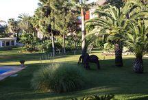 Jardines / Gardens - HC Marbella / HC Marbella International Hospital http://marbellahighcare.com/ International Cancer Center Marbella cuenta con un entorno privilegiado a 200 metros del mar, situado en la Costa del Sol (Málaga)