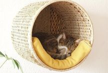 Cat stuff / bed / toys / by Jolan ::