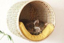 Cat stuff / bed / toys / by Jolan ::