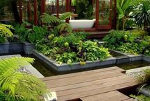 House e garden