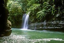 Turismo en la Selva Central