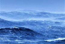 SCENE • Sea