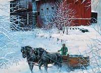 Country Christmas / by Sincere Rael