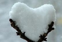 <3 Hearts in Nature <3 / by Adrienne Williams