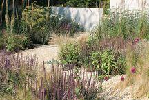 Feather Garden