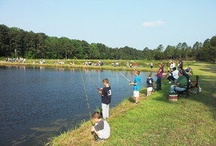 Special Events / by Visit Richmond County, NC