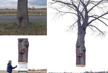creatief gebruik van natuur