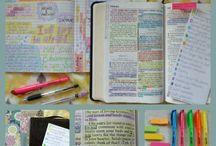 Studiu