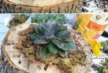 """zahrada - """"nádoby"""" na kytky, záhony a opory"""