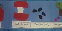 1st Grade / by Elisabeth Haywood