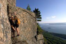 Our Favorite Hikes / Trails, trails, trails