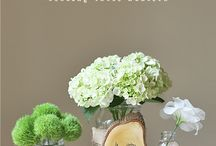 Flowers for My Wedding / by Marnie Anderson