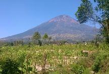 Travel (INDONESIA)