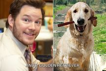 Barks and Recreation / Everybody has a spirit animal / by Parks and Rec