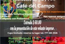 Café del Campo / Charlas entre amigos, acerca de todos los contratiempos y éxitos de un cultivador urbano.  Mentor  de coordinación