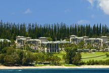 The Ritz Carlton Kapalua / Surrounded by two 18-hole championship golf courses and a pineapple plantation, The Ritz-Carlton, Kapalua is adjacent to the sandy D.T. Fleming Beach. A 20,000-square-foot sundeck houses a three-tiered pool with poolside bar, two spa tubs, and cabanas (surcharge). Other facilities include tennis and basketball courts, a nine-hole putting green, and a croquet and bocce ball lawn.