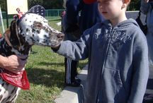 Dalmatian Day / The FASNY Museum of Firefighting's signature event. Always the Saturday before Columbus Day.