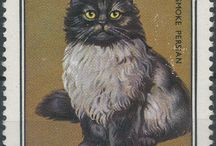 Chats timbres