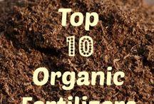 Organiczne Ogrodnictwo