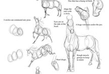 Drawing sketches and tutorials