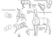 Illustration / Illustration sketching