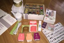 Scentsy / Independent Scentsy Consultant