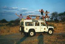 Cutting Across Africa  / by Marybeth Bond